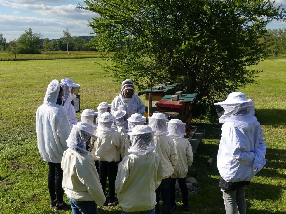 Eltern-Kind Bienenprojekt 2019